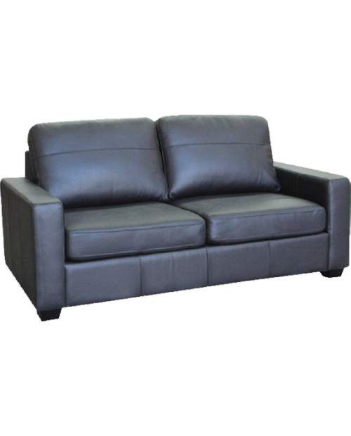 Furniture Clearance-Alessi Leather Sofa Bed